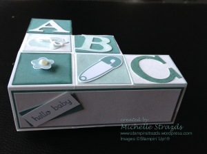 Lost Lagoon Block Step Card Baby Shower 2