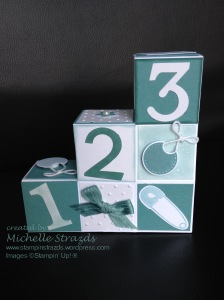 Lost Lagoon Block Step Card Baby Shower Back