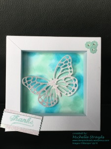 butterfly-shadow-frame-front-on-copy