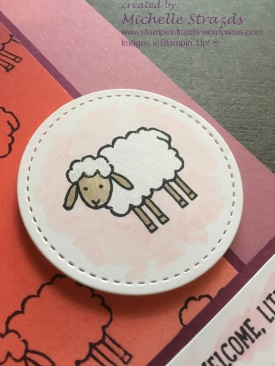 welcome-little-lamb-close-up-a